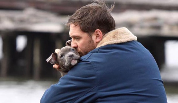 "Tom Hardy at the ""Animal Rescue"" movie set in Brooklyn"